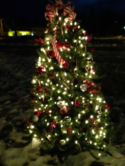 Big Stone Lake Area Realty's Peppermint Tree